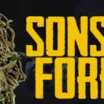 Sons of the Forest Download Crack CPY Torrent PC